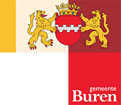 Voor de gemeente Buren hebben we een onderzoek naar informatieveiligheid voor de rekenkamercommissie uitgevoerd in 2016