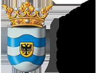 Voor de gemeente West Maas en Waal doen we het DigiD assessment vanaf 2015